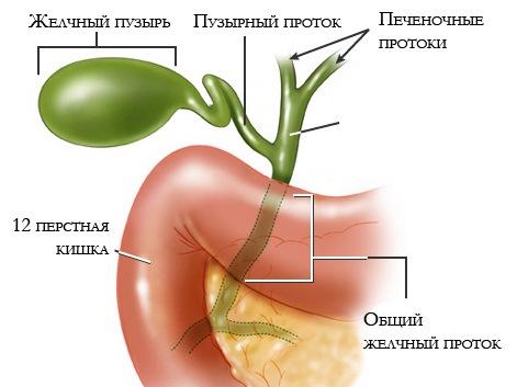 чем снять боль при панкреатите и холецистите