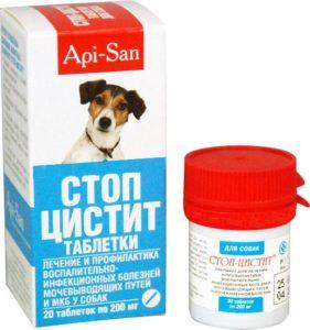 если у щенка 4 месяцев цистит как лечить