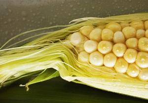 кукурузные рыльца при мочекаменной болезни