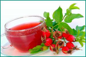 можно ли пить чай с шиповником при цистите
