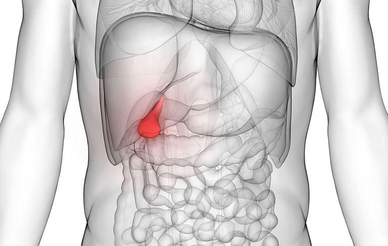 точка проекции желчного пузыря при хроническом холецистите