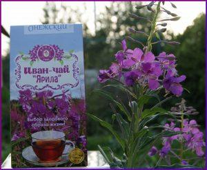 иван чай при мочекаменной болезни