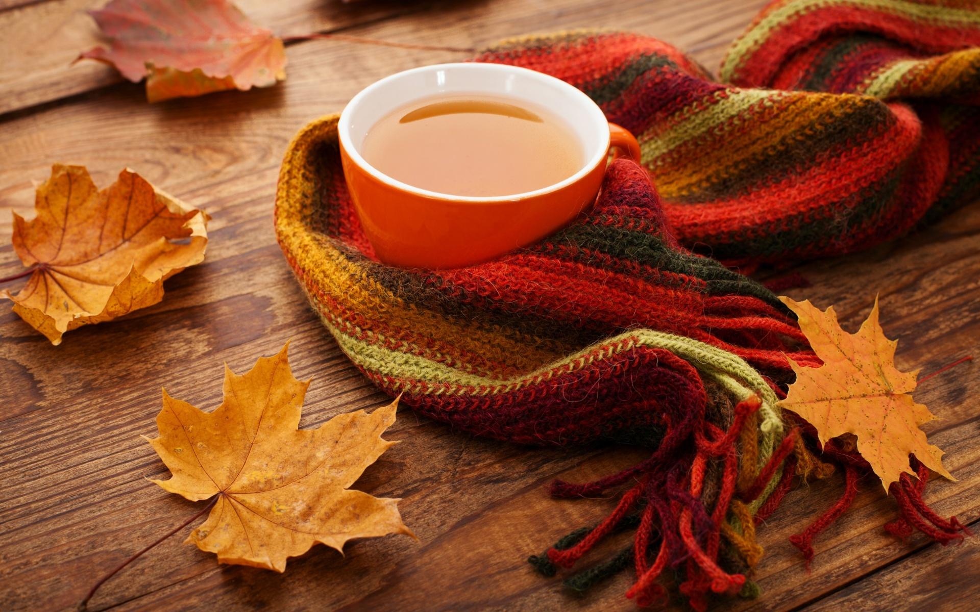 как принимать чай тяньши и холецистит