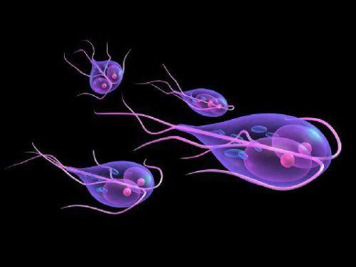какие антибиотики можно принимать при холецистите