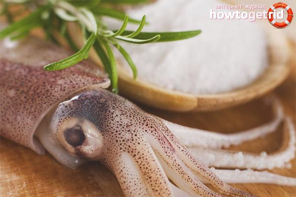 польза и вред кальмаров при холецистите